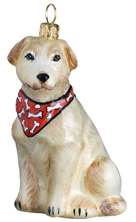 Labrador Retriever Yellow w/ Red Bandana