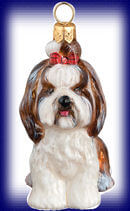 Shih-Tzu Sitting with Top Knot Brown and White