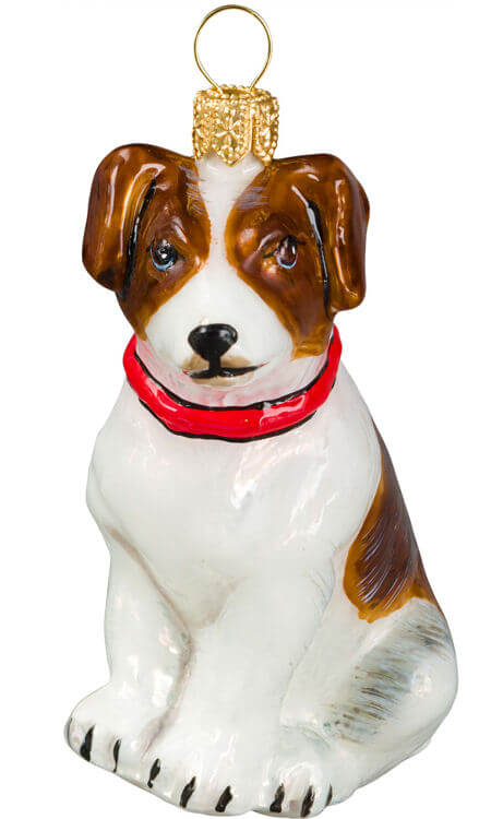 Jack Russell Terrier Brown& White with Red Collar - Jack Russell Terrier Brown& White With Red Collar Inge-Glas