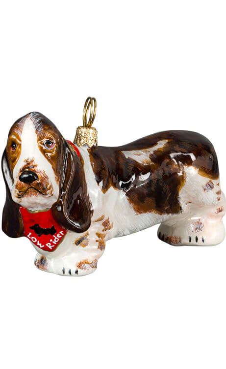 "Basset Hound with ""Low Rider"" Bandana"